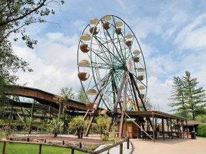 safari park attrazioni